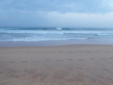 Blog 3_Indian Ocean