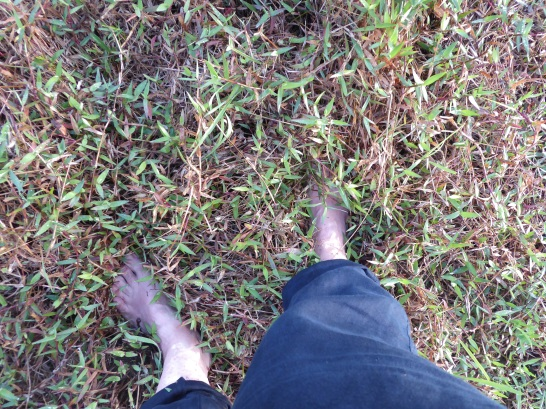 paddy feet_blog 4